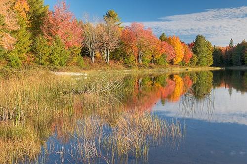 Otter Lake, Hiawatha National Forest, Michigan