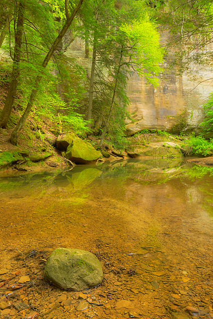 Magical Hollow, Cedar Falls Area, Hocking Hills State Park, Ohio