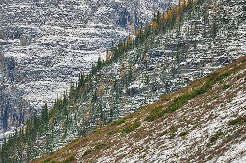 Mountain Patterns, Consolation Lakes, Banff National Park, Alberta