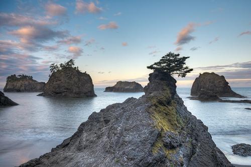 Secret Beach Morning, Samuel H. Boardman State Park, Oregon